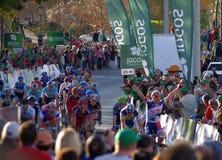Gianni Meersman wins in Albufeira Royalty Free Stock Photo