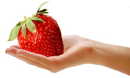 Giant berry Stock Images