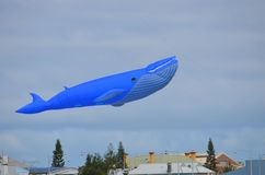 Giant Blue Whale Kite Flying above the Wind on the water Festival royalty free stock photos