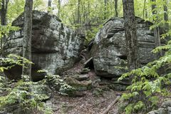 Giant Boulders in a Catskill Mountain Forest. A pair of massive boulders of sedimentary rock along a Catskill Mountain trail in New York stock images