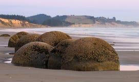 Giant boulders on the ocean shore an sunrise. Moeraki Boulders, New Zealand Stock Photography