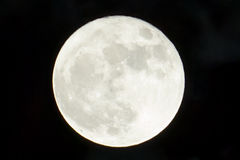 Giant, bright white moon in the clear black sky royalty free stock images