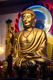 Giant Buda from NYC royalty free stock images