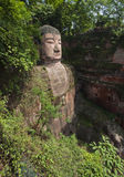 The giant buddah of leshan sichuan province Royalty Free Stock Photography