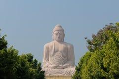 Giant Buddha. In Bodhgaya, Bihar, India Royalty Free Stock Photo