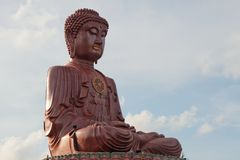 Giant Buddha Royalty Free Stock Photo