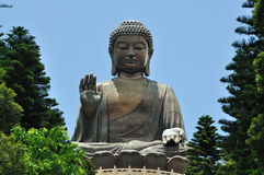 Giant Buddha Royalty Free Stock Photos
