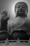The giant buddha. Sitting on lotus leaves Royalty Free Stock Photography