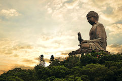 Giant Buddha At Golden Evening Royalty Free Stock Image