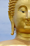 Giant buddha face Royalty Free Stock Images