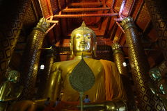 Giant Buddha Image royalty free stock photo