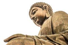 Giant Buddha isolated over white background Royalty Free Stock Photo
