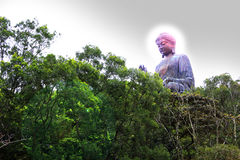 Giant buddha royalty free stock photography