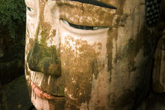 Giant buddha's face in leshan, sichuan, china Stock Photography
