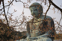 Giant Buddha at spring Stock Images