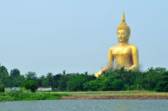 Giant buddha statue Royalty Free Stock Images