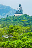 Giant Buddha statue on the mountain Royalty Free Stock Photography