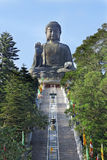 Giant Buddha Statue in Tian Tan Stock Photo