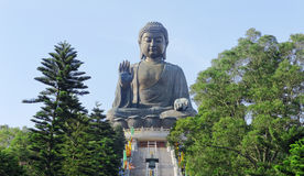 Giant Buddha Statue in Tian Tan Stock Photography