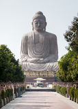 The Giant Buddha Statue and tiny chipmunk. The tiny chipmunk has run out on a path in front of The Giant Buddha Statue in Bodhgaya, Bihar, India. The statue is stock photos