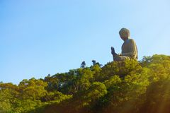 Giant Buddha on sunset Stock Image