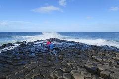 Giant causeway in north ireland. The Giant's Causeway is an area of about 40,000 interlocking basalt columns, the result of an ancient volcanic eruption. It is stock image