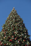 Giant Christmas tree against blue sky Royalty Free Stock Images