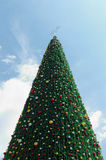 Giant christmas tree Royalty Free Stock Photos