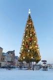 Giant Christmas tree. STOCKHOLM, SWEDEN - DEC 28, 2015: Giant decorated christmas tree on the quay in the old town in Stockholm, December 28, 2015, Sweden stock images