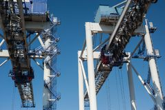 Giant container cranes Stock Image