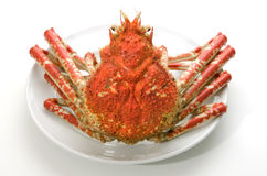 Giant crab Royalty Free Stock Image