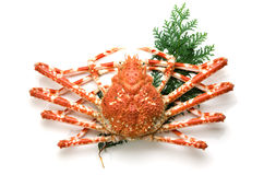 Giant crab Stock Photography