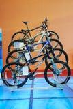 Giant  cycling mountain bike Royalty Free Stock Photo