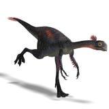 Giant dinosaur gigantoraptor Stock Photography