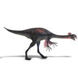 Giant Dinosaur Gigantoraptor Stock Image