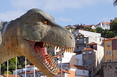 Giant dinosaur t rex Royalty Free Stock Images