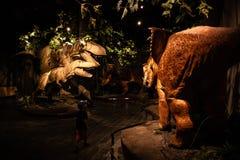 Giant Dinosaur or T-rex skeleton stock images