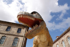 Giant dinosaur t rex Stock Images
