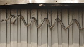 Giant Dirty Spiral Electrical Wire on Corrugated Iron Wall royalty free stock photo