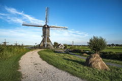 Giant Dutchman at the morning light stock photo