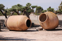 Giant earthenware pots for planting trees Stock Image