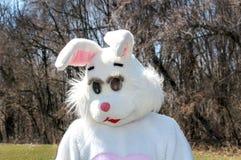 Giant Easter Bunny Stock Image