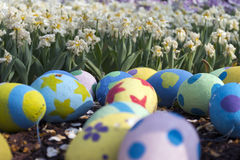Giant Easter Eggs with petals on wood chips Stock Images