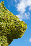 The giant floral sculpture 'Puppy' by Jeff Koons Stock Photography