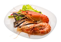 Giant Freshwater Prawn and king prawns Stock Photos