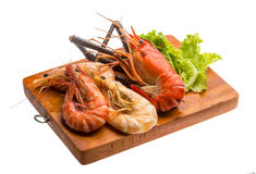 Giant Freshwater Prawn and king prawns Royalty Free Stock Images