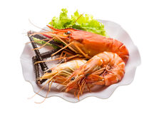 Giant Freshwater Prawn and king prawns Royalty Free Stock Photos