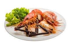 Giant Freshwater Prawn and king prawns Stock Photo