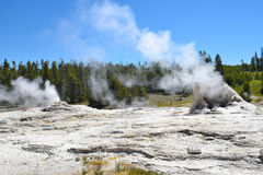 Giant Geyser. Is the namesake for the Giant Group of geysers, which includes Bijou Geyser, Catfish Geyser, and Mastiff Geyser Royalty Free Stock Photo