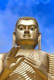 Giant Gold Buddha Stock Image